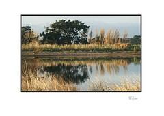 Evening (radspix) Tags: sony ilce7r 80200mm super ozeck auto zoom f35