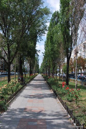 Київ, бульвар Лесі Українки  InterNetri Ukraine 264