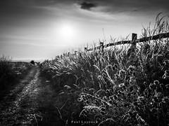 Saltdean Sunset (amipal) Tags: countryside england gb greatbritain saltdean southdowns summer sunset sussex uk unitedkingdom