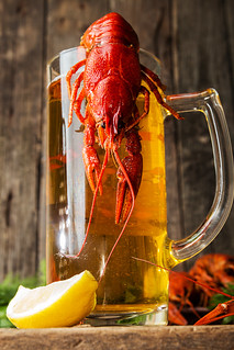 Beer party. Still life with glass of beer, crayfish crawfish against old wooden rustic background.