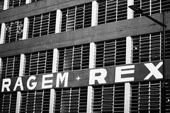 IMG_6440 (Joana G Berwanger) Tags: portoalegre streetphotography street fotografiaderua rua city cidade blackandwhite