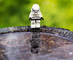 Looking into the future (Jezbags) Tags: lego star wars stormtrooper future reflections reflection toy toys legos trooper starwars canon canon60d 60d 100mm closeup upclose macro macrophotography macrodreams macrolego bokeh forceawakens