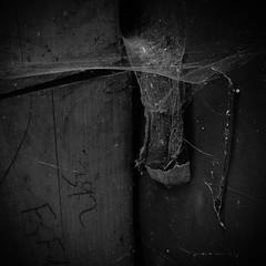 The Cobweb (stujfoster) Tags: farm shed urbex gritty urban uk england