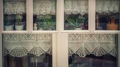 Ventanas (Marina Is) Tags: sliderssunday windows ventanas crochet hss