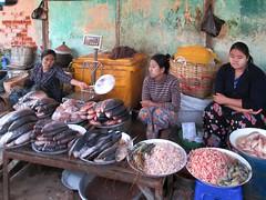 Nyaung Oo Fish Market (D-Stanley) Tags: nyaungoo fish market bagan myanmar burma ayeyarwady irrawaddy river
