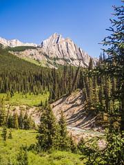 Johnston Creek Banff (kensparksphoto) Tags: banff nationalpark canada canadianrockies rocky mountains hiking hike