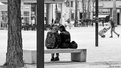 (ShackHealter) Tags: noiretblanc blackandwhite biancoenero street city pescara italy italia abruzzo nikon nikkor dslr reflex digital 18105 città lines love couple friends sister brother brothers