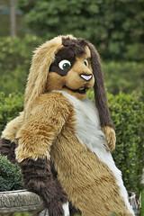 _DSC0027 (MM Furry Photo) Tags: bunny rabbit fursuit fursuiting portrait critterfactory pantoffel