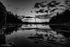 Trehörningen, Stockholm County, Huddinge, Low Angle View (Tube Séboom) Tags: lake huddinge xt2 fuji fujinon bw monochrome blackandwhite xf14mmf28 r