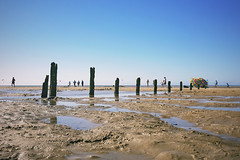 Brancaster Beach (_ _steven.kemp_ _) Tags: brancaster beach burnham deepdale market norfolk sea sand sky groyne puddle landscape seascape defence england seaside sunny warm
