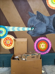 The magical and the quotidian (quinn.anya) Tags: magic cat stare boxes