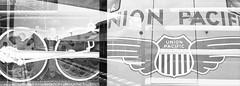 [2018_06_27] The Negative Positives Double-Exposure Film Exchange (Shaun Nelson) Tags: 35mm film nikonphotography doubleexposure ilford hp5 filmphotography filmisnotdead analog ishootfilm nikontop filmcamera believeinfilm filmcommunity analogue kodak analogphotography staybrokeshootfilm filmfeed buyfilmnotmegapixels thefilmcommunity shootfilm 35mmfilm keepfilmalive filmphoto ogden utah ut d76 nikon nikef2 nikonfe birmingham uk usa train station union unionpacific steamengine traintracks deoubleexposure bw blackwhite blackandwhite ilfordfilm ilfordhp5plus ilfordhp5plus400 ilfordhp5