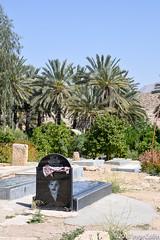 20180330-_DSC0133.jpg (drs.sarajevo) Tags: sarvestan ruraliran iran nomads farsprovince chamsatribe