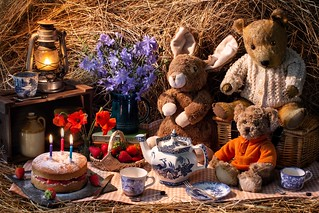 Teddy Bears' Birthday Picnic