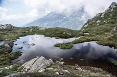 du col de las Fouzès à l'étang d'Alate (Ariège) (PierreG_09) Tags: ariège pyrénées pirineos couserans auluslesbains occitanie midipyrénées eu lac mare laquet