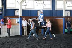 "2018-07-15 (11) r1 Johan Rosado on #3 The Great Provider (JLeeFleenor) Tags: photos photography md marylandracing laurelpark marylandhorseracing jockey جُوكِي ""赛马骑师"" jinete ""競馬騎手"" dżokej jocheu คนขี่ม้าแข่ง jóquei žokej kilparatsastaja rennreiter fantino ""경마 기수"" жокей jokey người horses thoroughbreds equine equestrian cheval cavalo cavallo cavall caballo pferd paard perd hevonen hest hestur cal kon konj beygir capall ceffyl cuddy yarraman faras alogo soos kuda uma pfeerd koin حصان кон 马 häst άλογο סוס घोड़ा 馬 koń лошадь laceygaudet trainers paddock lacey gaudet horsepeople"
