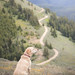 Summit dogs on Chumstick Mountain (johnwporter) Tags: hiking scramble cascades northcascasdes mountains nationalforest wenatcheenationalforest entiatmountains chumstickmountain 徒步 爬行 喀斯喀特山脈 北喀斯喀特山脈 山 國家森林 韋納奇國家森林 恩蒂亞特山脈 強史提克山 labrador yellowlab 拉布拉多 黃拉不拉多
