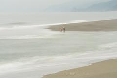The Beachcombers (Charlotte Hamilton Gibb) Tags: california northcoast patrickspoint