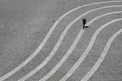 [Bundeskunsthalle ● Bonn / Juli 2016] (querformat-fotografie) Tags: mainz lines graphic orte street people fotografie linien achimkatzberg unposed alltagssituation bundeskunsthalle urban bw strassenfotografie bonn photography zufall architecture art querformatfotografie europe german white