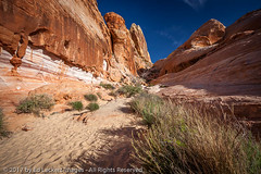 The White Dome Trail, Valley of Fire State Park, Nevada (edleckert) Tags: canoneos5dmarkii color day horizontal nature nevada nopeople northamerica outdoors photography scenics unitedstates valleyoffirestatepark westernusa whitedomestrail winter