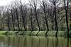 Licht und Schatten (ingrid eulenfan) Tags: leipzig flus wasser lichtundschatten elsterflutbett
