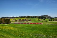 Hopferau (Paolo Brocchetti) Tags: paolobrocchetti ferrovia hopferau db bahn rail nikon d810 24120 db218