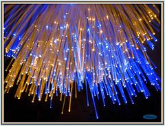 Fairy LIGHTS - MM - Theme-Plastic (LOVE.OVER.LUST.) Tags: mm macromondays plastic opticfibre opticalfiber lamp showpiece tabletop stilllife indoor blackbackground light decorative blue yellow sundaylights