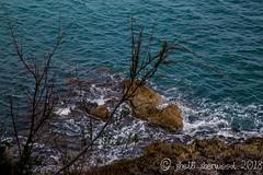 2014 03 15 Palermo Cefalu large (126 of 288) (shelli sherwood photography) Tags: 2018 cefalu italy palermo sicily