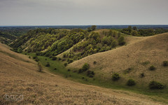 Zagajička brda (Slobodan Siridžanski) Tags: boca zagajičkabrda 2018 grebenac vojvodina serbia rs
