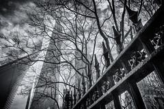 World Trade Centre Fence (Harry2010) Tags: newyork newyorkcity manhattan worldtradecentre 911memorial fence fencefriday city outdoors trees