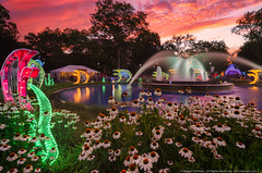 Chinese Lantern Festival (mhoffman1) Tags: chineselanternfestival franklinsquarepark laowa12mm philadelphia philly sonyalpha flowers fountain lanterns longexposure park sunset pennsylvania unitedstates us