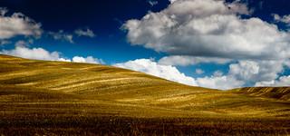 Summerfields at Monticchiello