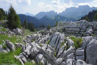 SF_DSC04288 - Lappia de la Hochmatt, Gruyère region - Switzerland