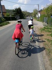 """Naty na tyči mezi Třebaní a Srbskem • <a style=""""font-size:0.8em;"""" href=""""http://www.flickr.com/photos/28630674@N06/41642599641/"""" target=""""_blank"""">View on Flickr</a>"""