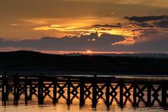 Amble Sunset (Dpanchaud) Tags: 2018 silhouette northumberland england europe sunset amble