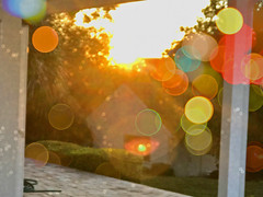 A Magical Sunrise (soniaadammurray - On & Off) Tags: digitalphotography manipulated experimental collage abstract artchallenge sunrise bokeh bokehwednesdays sun reflections shadows exterior nature