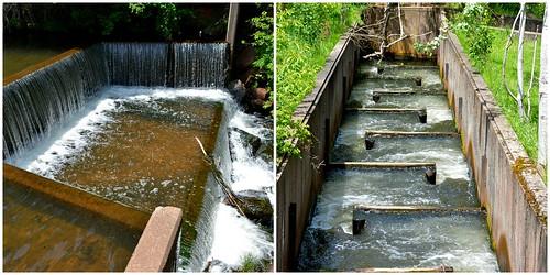 Knox's Dam, 442 South Montague Road, Victoria Cross, Montague, PEI
