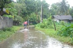 DSC_5894 (madelinedahm) Tags: urbanflooding srilankaflood srilanka colombo kelaniganga floodplain drainagedisaster risk reduction iwmi