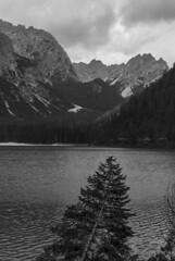 Pointing you down (VALERIA MORRONE ヴァレリア فاليريا) Tags: braies lago lake see lac wildsee pragser nikon d60 valeria morrone luce raggi light alberi trees südtirol alto adige