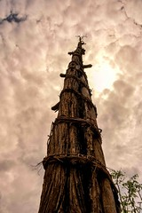 Konso Generation Totem (Rod Waddington) Tags: africa african afrique afrika äthiopien ethiopia ethiopian ethnic etiopia ethnicity ethiopie etiopian omovalley outdoor omo omoriver konso traditional tribe tribal generation totem village valley trees culture cultural wood wooden historical unesco