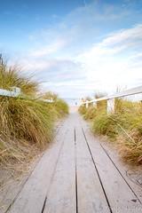 The Boardwalk (Tony Mullen Photography) Tags: beach boardwalk beachboardwalk seashore shoreline shore irishcoast coastalwalk tonymullenphotography rosslare rosslarestrand rosslarewexford