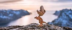 29/52 - Balance (Reiterlied) Tags: 1835mm angle d500 dslr dino dinosaur lego legography lens nikon norway photography raptor reiterlied senja sigma stuckinplastic trap trex toy velociraptor wide