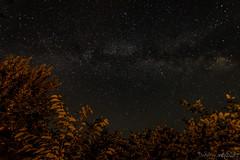 Stars -2- (Norbert Helbig) Tags: österreich nikon d7200 sterne stars europa europe austria sommer summer himmel heaven nacht night langzeitbelichtung lzb
