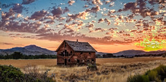Sunrise Over Old Homestead (http://fineartamerica.com/profiles/robert-bales.ht) Tags: gemcounty haybales idaho land people photo places states sunsetorsunrise barn sunrise sunset house farm homestead ranch cattle barnwood fence butte squawbutte mountain idado landscape emmett treasurevalley scenicbiway americaphotography valley idahophotography beautiful sensational spectacular magnificent surreal sublime magical spiritual inspiring inspirational canonshooter scenic wow stupendous superb building grass hay trees yellow blue robertbales sky railroad tracks