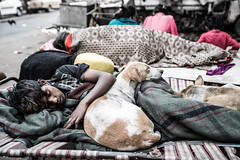Best Friends-DSC_2020 (thomschphotography3) Tags: india asia kolkata calcutta boy dog friends sleeping poverty streetphotography child homeless
