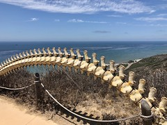A place for watching whales (kimbar/Thanks for 3.5 million views!) Tags: whalewatching ptcabrillo sandiego california whalespine plastic ocean pacificocean