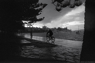 winter. Manly 2018 #870