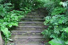 The Forgotten Journey (Michiale Schneider) Tags: steps foliage pathway walk leaves sidecutpark maumee ohio landscape michialeschneiderphotography
