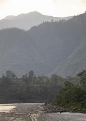 Herding (karenmunro2) Tags: work nepal may2018 benighat gorkha kathmandu ruralnepal gorkadistrict river trisuli trisuliriver burigandakiriver water waterways southeastasia asia ruralasia rurallife sunset dusk goldenhour bluehour