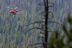 2018-06-29 K3 Colorado (508) (Paul-W) Tags: helicopter n669ac fire wildfire forestfire smoke rockymountainnationalpark 2018 bucket water coloradoriver colorado redhelicopter rope trees mountain burning